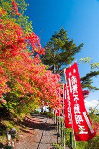 龍願寺風景