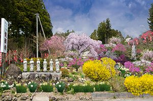 龍願寺六地蔵の風景